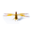 Flying Insects